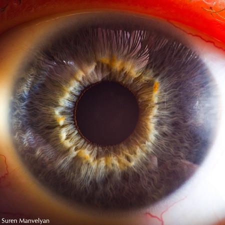 Глаза людей и животных – макроснимки Сурена Манвеляна — фото 23