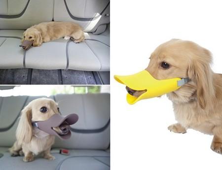 Стоит Quack Muzzle 25 долларов