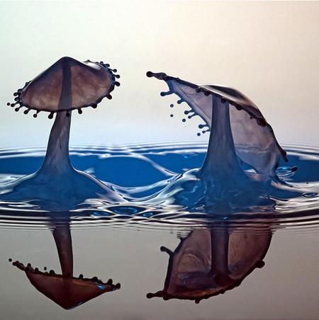 Скульптуры из … воды. Макрофотографии разноцветных капель — фото 39