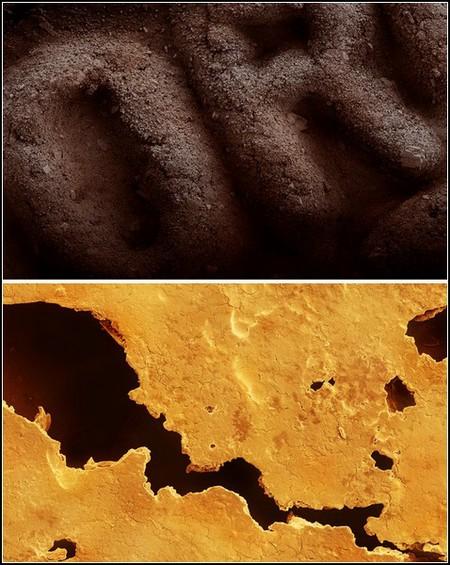 Вверху — печенье Оrео, внизу — печенье с предсказаниями