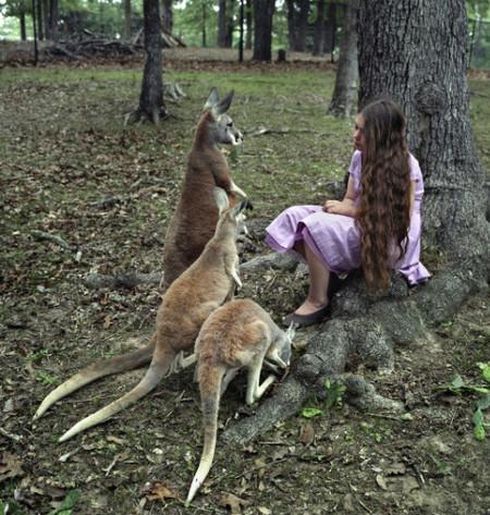 Фотопроект Amelia's world – животные в мире одной девочки — фото 4