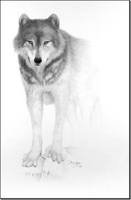 Рисунки карандашом … но не руками. Дуг Лэндис (Doug Landis) – необычный художник. — фото 8