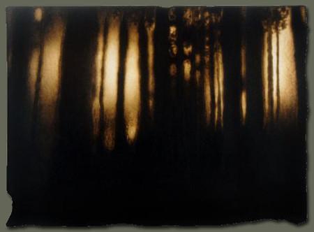Выжженные картины Пола Чойновски — фото 16