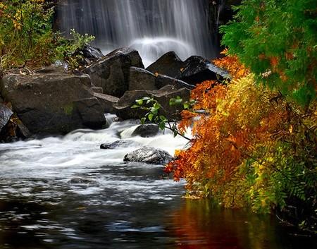 Осень умеет уходить красиво. 55 причин полюбить осень — фото 20