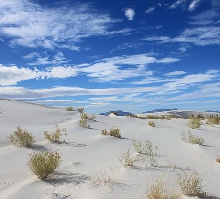 Белая жара в пустыне White Sands National Monument — фото 8