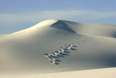 Белая жара в пустыне White Sands National Monument — фото 14