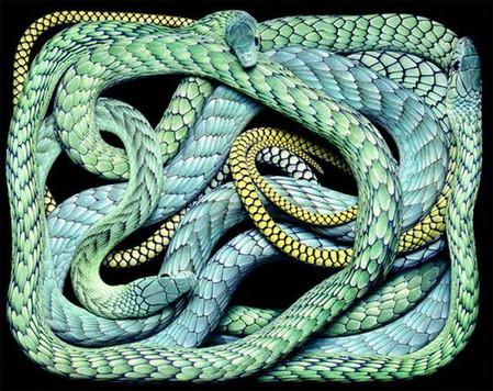 Гвидо Мокафико (Guido Mocafico) - Повелитель змей — фото 11