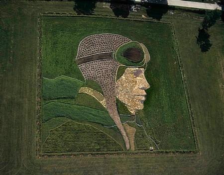 Поле – холст, трактор – кисть. Полевая живопись Стэна Херда (Stan Herd) — фото 8