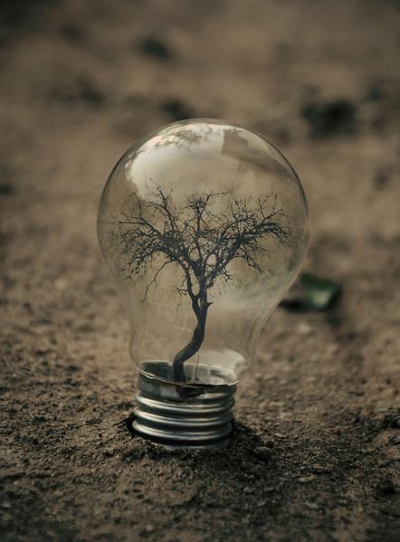 Волшебные лампочки на фотографиях Адриана Лимани — фото 2