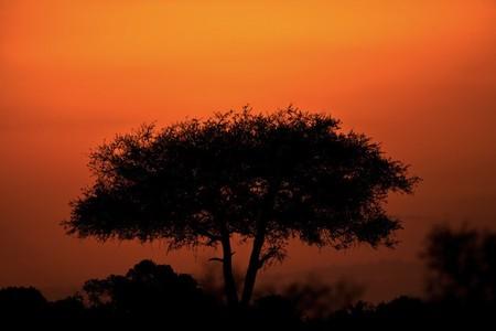 Апельсиновое небо, оранжевый закат – фотографии Суха Дербент (Süha Derbent) — фото 15