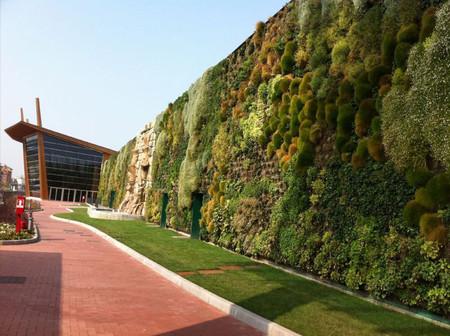 Вертикальный сад – рекордсмен — фото 9