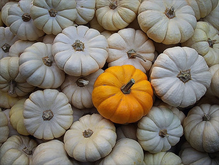 Осень умеет уходить красиво. 55 причин полюбить осень — фото 37