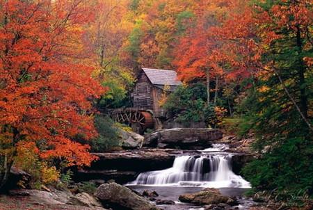 Осень умеет уходить красиво. 55 причин полюбить осень — фото 15