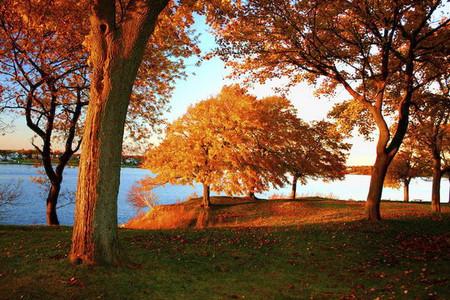 Осень умеет уходить красиво. 55 причин полюбить осень — фото 28