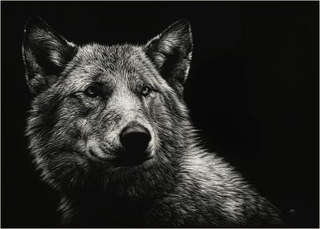 Картины в технике скрэтчборд от Кристины Пенеску — фото 14