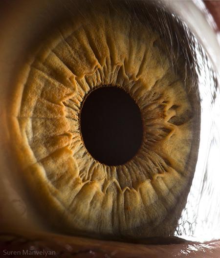 Глаза людей и животных – макроснимки Сурена Манвеляна — фото 19