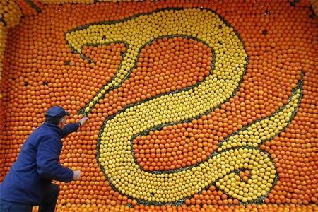 Цитрон – самый витаминный фестиваль — фото 5