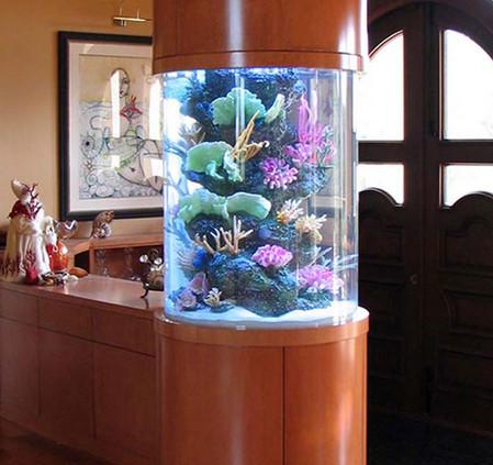 Аквариум – не только домик для рыб. Необычные и разные, маленькие и огромные аквариумы – солисты в интерьере — фото 18