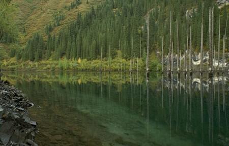 Волшебное озеро Каинды в Казахстане — фото 3