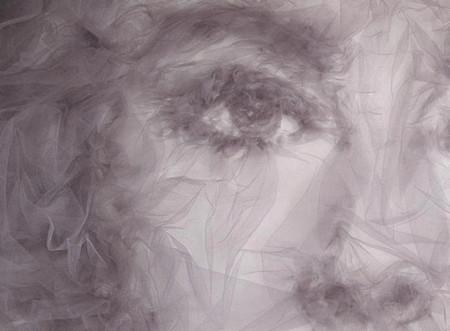 Самые удивительные картины – из тончайшего тюля — фото 24