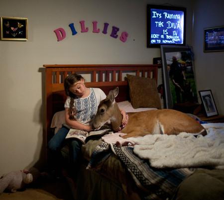 Фотопроект Amelia's world – животные в мире одной девочки — фото 10