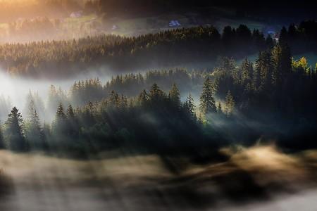 Туманные пейзажи на красивых снимках Богуслава Стремпеля — фото 14