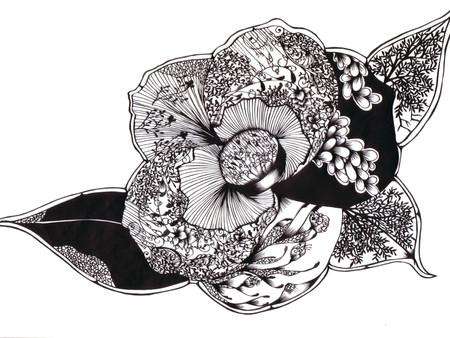 Кружева из бумаги – ювелирные работы Хины Аоямы — фото 36