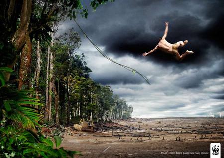 Зеленая реклама – повод задуматься или раздражитель? — фото 18