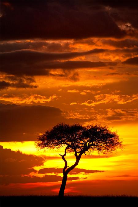 Апельсиновое небо, оранжевый закат – фотографии Суха Дербент (Süha Derbent) — фото 7