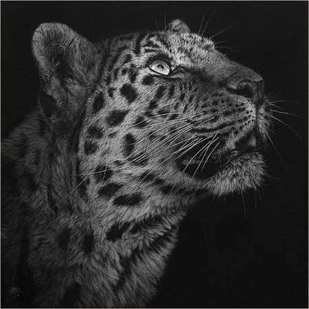 Картины в технике скрэтчборд от Кристины Пенеску — фото 2