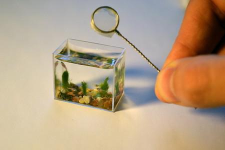 Аквариум – не только домик для рыб. Необычные и разные, маленькие и огромные аквариумы – солисты в интерьере — фото 20