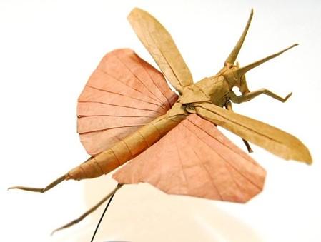Брайан Чен – мастер самого реалистичного оригами — фото 8