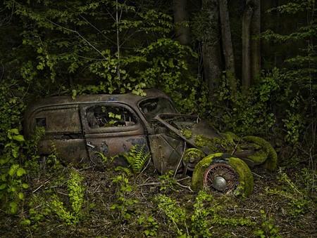 Парковка в раю – работы Питера Липпмана — фото 9