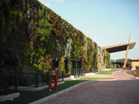 Вертикальный сад – рекордсмен — фото 10