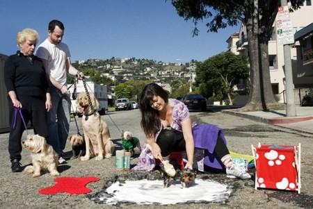 Дэвид Лусиано и Клаудиа Фикка. Что делает художник, когда ему надоедают дорожные ямы? Серию картин! — фото 7