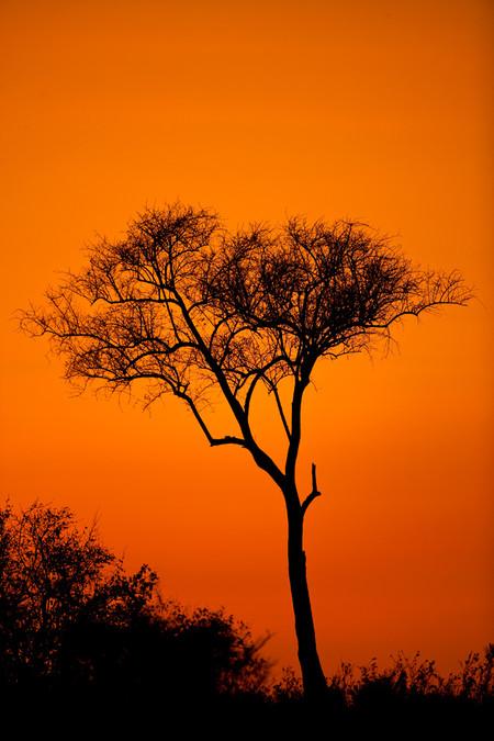 Апельсиновое небо, оранжевый закат – фотографии Суха Дербент (Süha Derbent) — фото 8