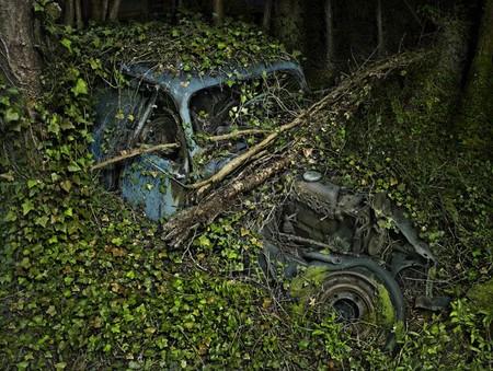 Парковка в раю – работы Питера Липпмана — фото 3