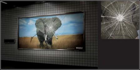 Зеленая реклама – повод задуматься или раздражитель? — фото 12