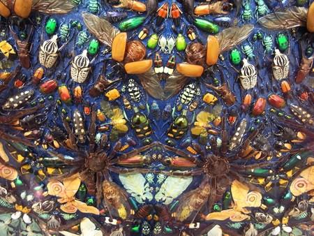 Capaneus – мозаика из маленьких красивых трупиков ) — фото 4