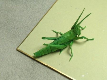 Брайан Чен – мастер самого реалистичного оригами — фото 11