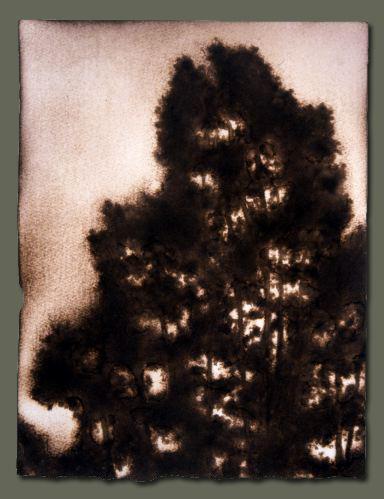 Выжженные картины Пола Чойновски — фото 15
