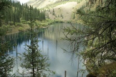 Волшебное озеро Каинды в Казахстане — фото 8