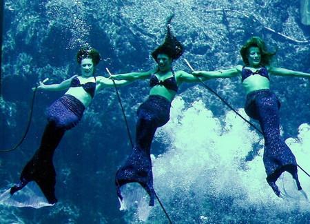 Русалки существуют! Weeki Wachee Springs – город настоящих русалок — фото 10