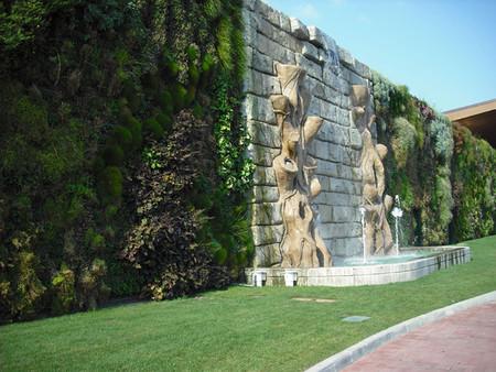 Вертикальный сад – рекордсмен — фото 12