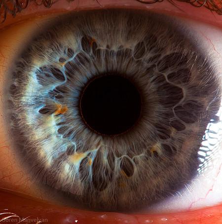 Глаза людей и животных – макроснимки Сурена Манвеляна — фото 14
