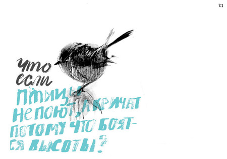 Что, если… птицы не поют, а кричат, потому что боятся высоты?