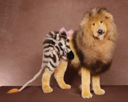 Собачий арт в работах Рена Низерленда — фото 10