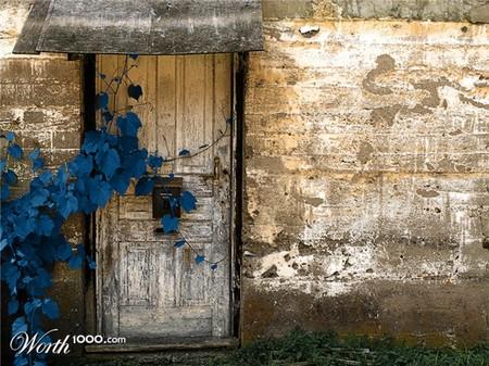 Что, если мир станет более … голубым? Красивый фотошоп — фото 17