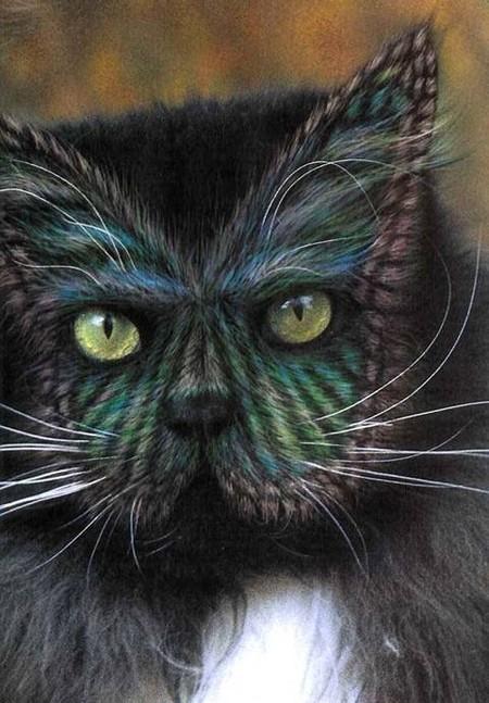 На плоской мордочке персидского кота бабочки очень хорошо получаются )