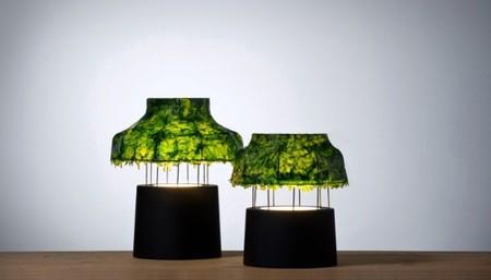 Экологично + технологично = лампа из морских водорослей — фото 4